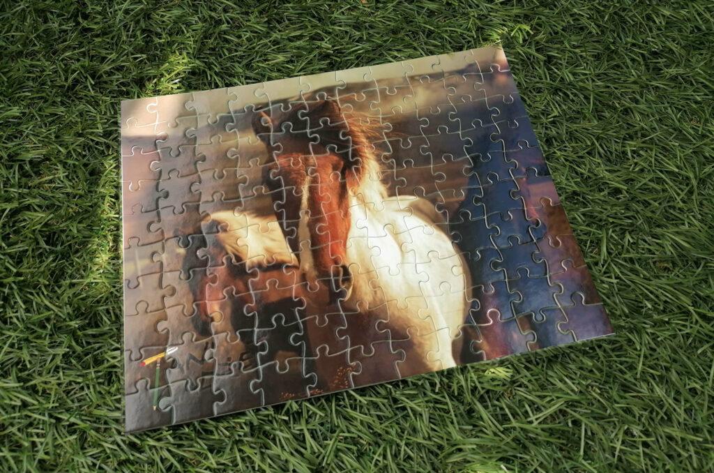 puzzle 110 elementów